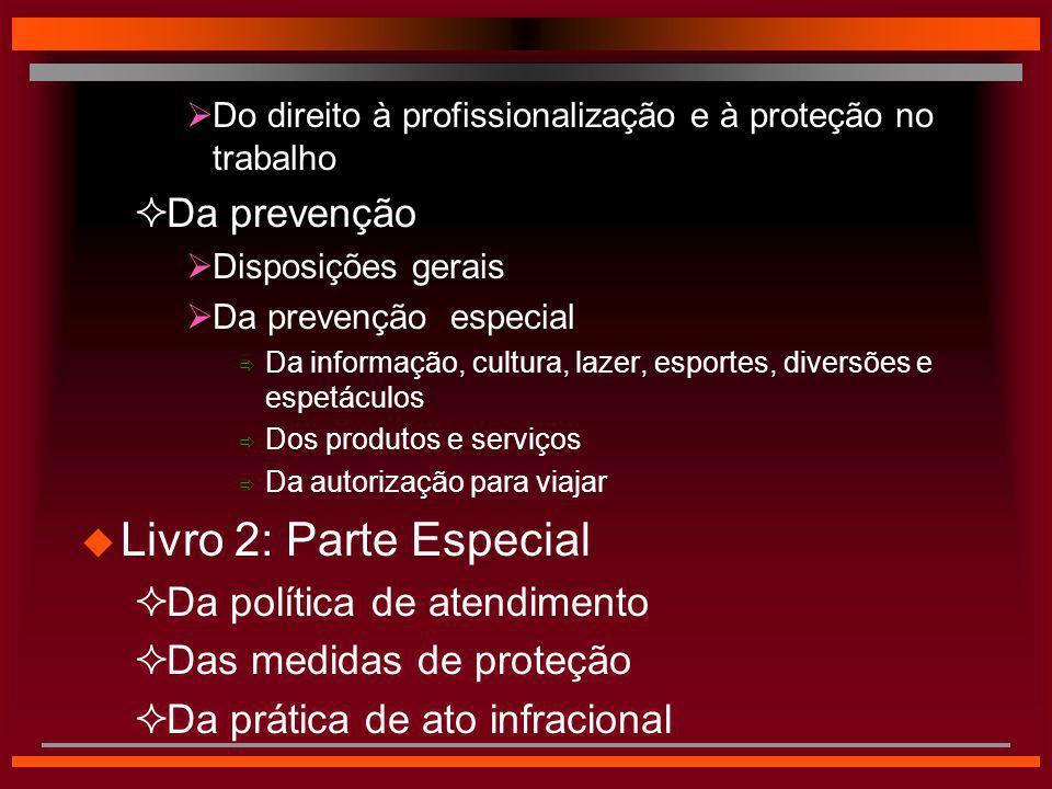  Do direito à profissionalização e à proteção no trabalho  Da prevenção  Disposições gerais  Da prevenção especial  Da informação, cultura, lazer