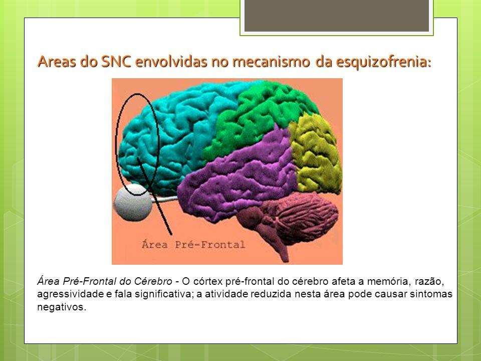 Área de Associação Terciária Parte do córtex frontal sem funções motoras.