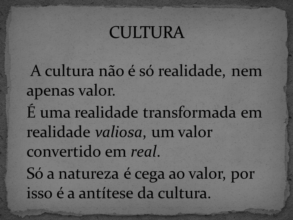 A cultura não é só realidade, nem apenas valor.