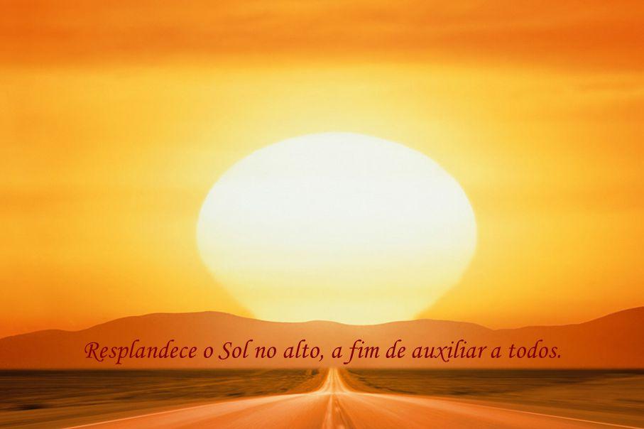 Aprenda com a Natureza 017 com som André Luiz