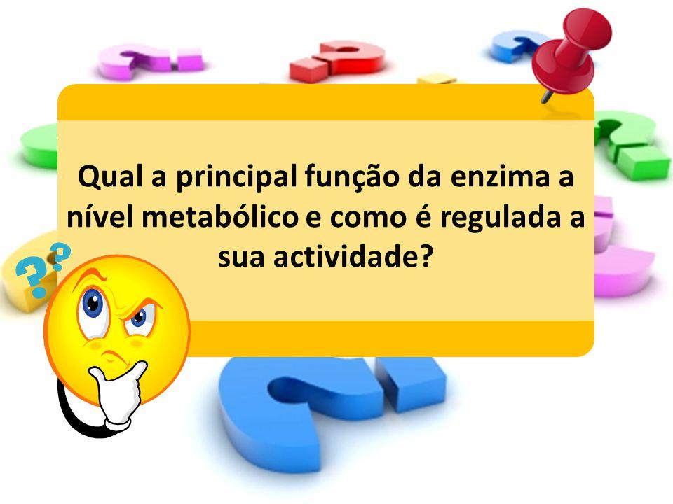Qual a principal função da enzima a nível metabólico e como é regulada a sua actividade?