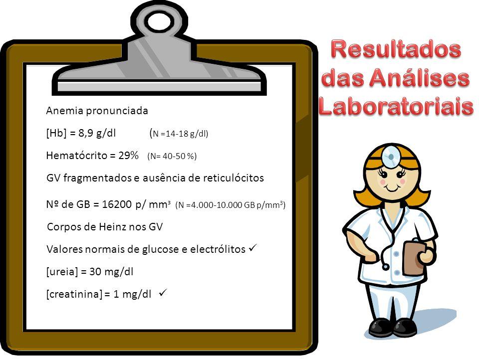 Anemia pronunciada [Hb] = 8,9 g/dl ( N =14-18 g/dl) Hematócrito = 29% (N= 40-50 %) GV fragmentados e ausência de reticulócitos Corpos de Heinz nos GV