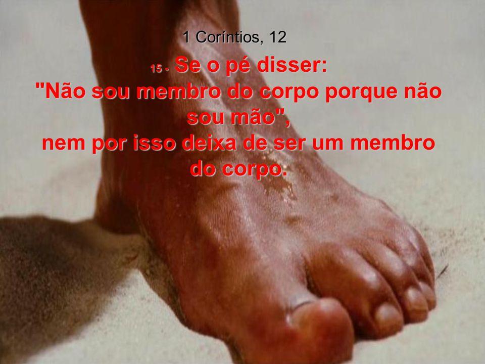 1 Coríntios, 12 15 - Se o pé disser: Não sou membro do corpo porque não sou mão , nem por isso deixa de ser um membro do corpo.