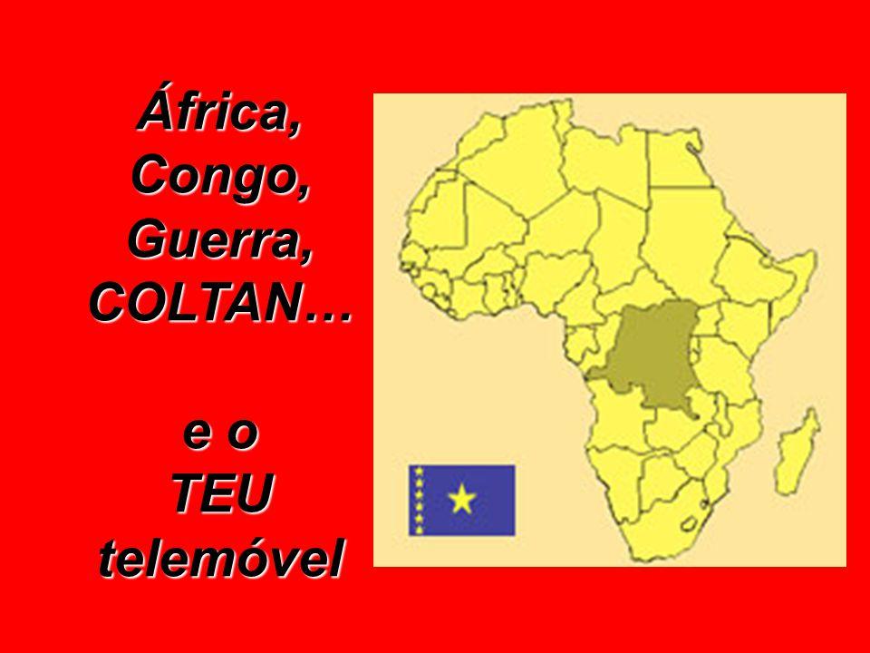 Federação de Comités de Solidariedade com a África Negra http://www.umoya.org Bukavu (R. D. Congo)