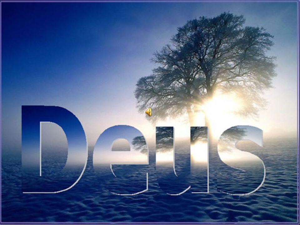 Cada casa, naturalmente, é construída por alguém, mas quem construiu todas as coisas é Deus.