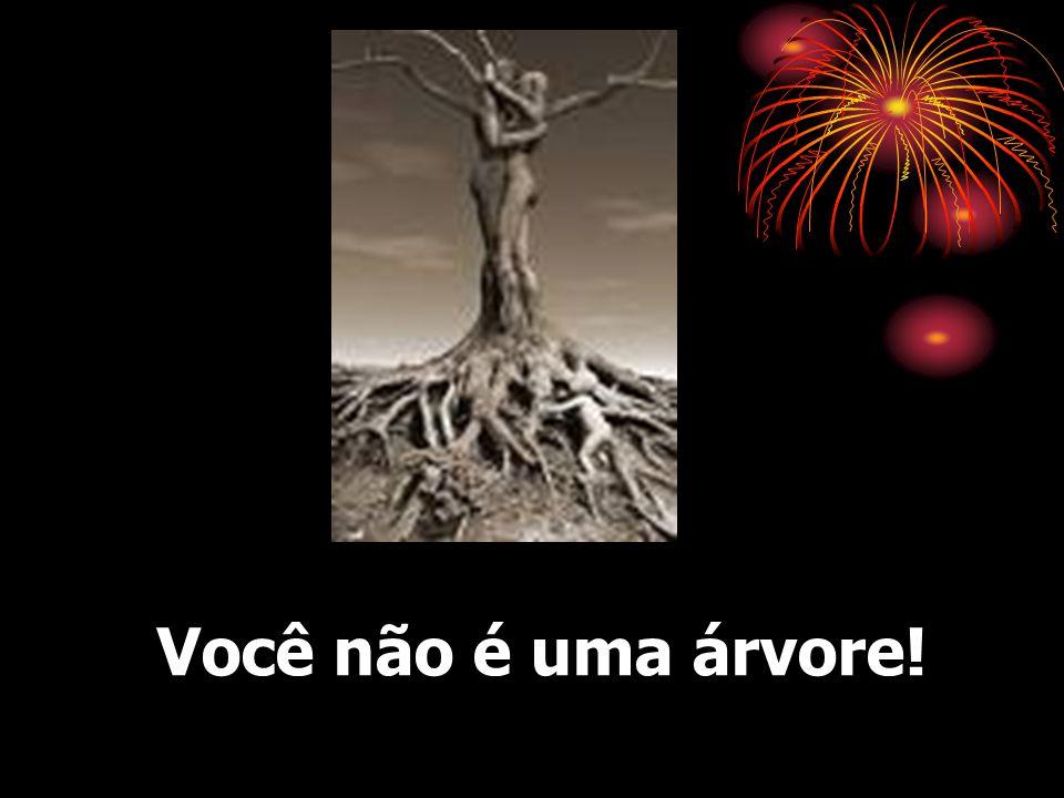 O entusiasmo vem do FUTURO… da VISÃO DO FUTURO !!!