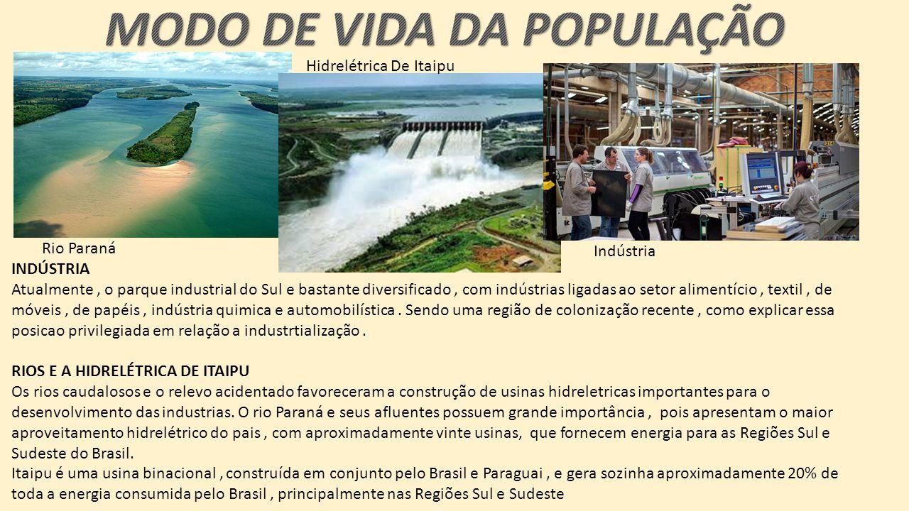 INDÚSTRIA Atualmente, o parque industrial do Sul e bastante diversificado, com indústrias ligadas ao setor alimentício, textil, de móveis, de papéis, indústria quimica e automobilística.