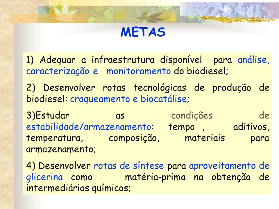 METAS 1) Adequar a infraestrutura disponível para análise, caracterização e monitoramento do biodiesel; 2) Desenvolver rotas tecnológicas de produção de biodiesel: craqueamento e biocatálise; 3)Estudar as condições de estabilidade/armazenamento: tempo, aditivos, temperatura, composição, materiais para armazenamento; 4) Desenvolver rotas de síntese para aproveitamento de glicerina como matéria-prima na obtenção de intermediários químicos;