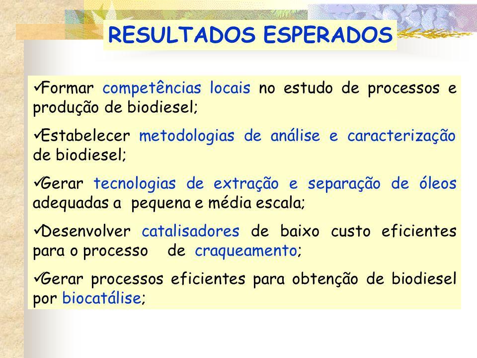 Formar competências locais no estudo de processos e produção de biodiesel; Estabelecer metodologias de análise e caracterização de biodiesel; Gerar tecnologias de extração e separação de óleos adequadas a pequena e média escala; Desenvolver catalisadores de baixo custo eficientes para o processo de craqueamento; Gerar processos eficientes para obtenção de biodiesel por biocatálise; RESULTADOS ESPERADOS