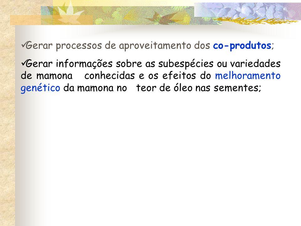 Gerar processos de aproveitamento dos co-produtos; Gerar informações sobre as subespécies ou variedades de mamona conhecidas e os efeitos do melhoramento genético da mamona no teor de óleo nas sementes;