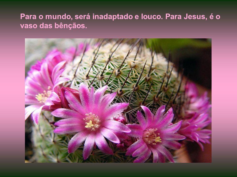 Esse é o tipo de aprendiz que o amor do Cristo constrange, na feliz expressão de Paulo. Vergasta-o a luz celeste por dentro até que abandone as zonas