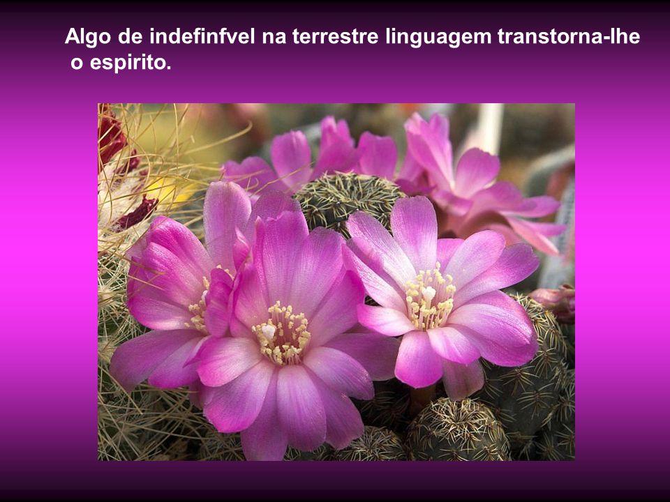 Algo de indefinfvel na terrestre linguagem transtorna-lhe o espirito.