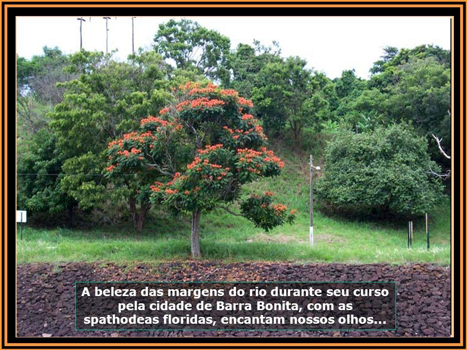 Casas de veraneio às margens do rio podem ser vistas durante o percurso por Barra Bonita...