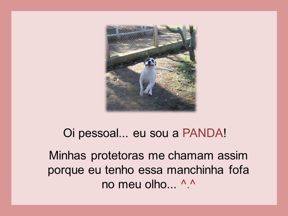 Oi pessoal...eu sou a PANDA.