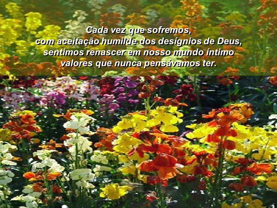 Serão atitudes que nos manterão espiritualmente saudáveis no processo de crescimento espiritual.