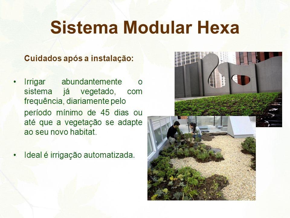 Cuidados após a instalação: Irrigar abundantemente o sistema já vegetado, com frequência, diariamente pelo período mínimo de 45 dias ou até que a vege