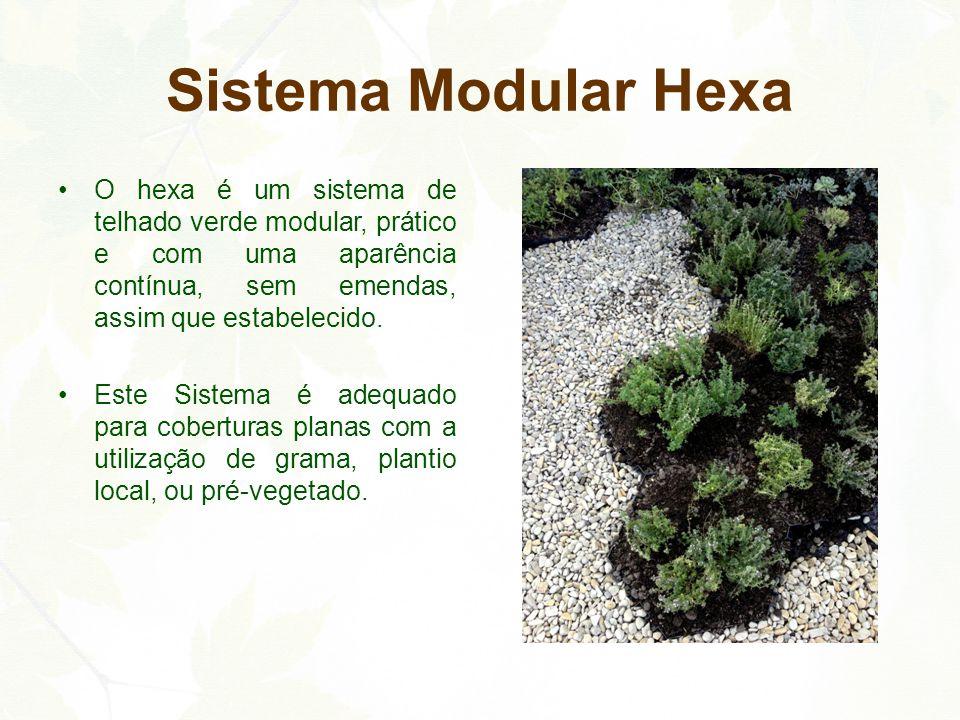 Sistema Modular Hexa O hexa é um sistema de telhado verde modular, prático e com uma aparência contínua, sem emendas, assim que estabelecido. Este Sis