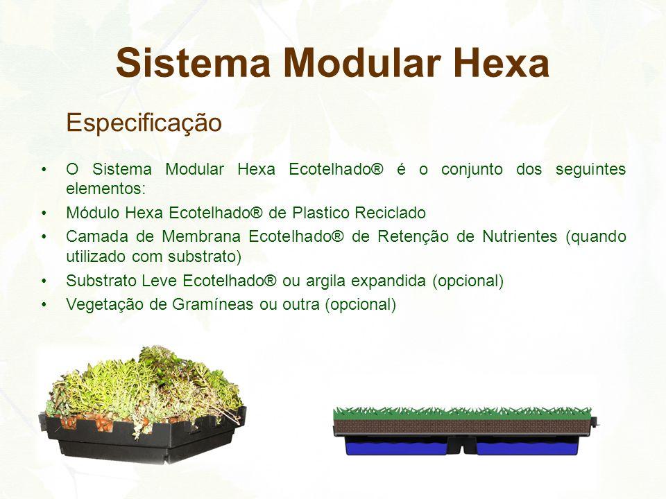 Especificação O Sistema Modular Hexa Ecotelhado® é o conjunto dos seguintes elementos: Módulo Hexa Ecotelhado® de Plastico Reciclado Camada de Membran