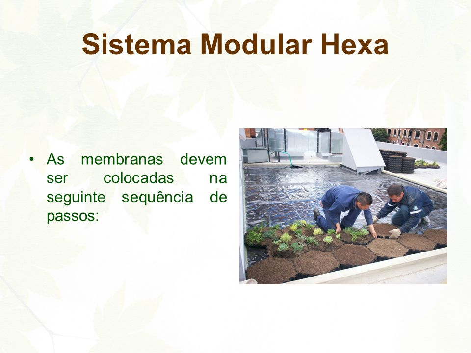 1º passo: Colocação dos Módulos Hexa Ecotelhado®, fixando-os entre si através de seus encaixes (macho-femea) Sistema Modular Hexa 2º passo: Membrana Ecotelhado® de Retenção de Nutrientes em rolo ou cortada dentro do módulo Hexa Ecotelhado®.
