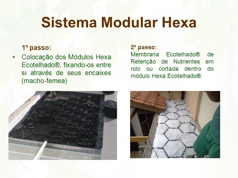 1º passo: Colocação dos Módulos Hexa Ecotelhado®, fixando-os entre si através de seus encaixes (macho-femea) Sistema Modular Hexa 2º passo: Membrana E