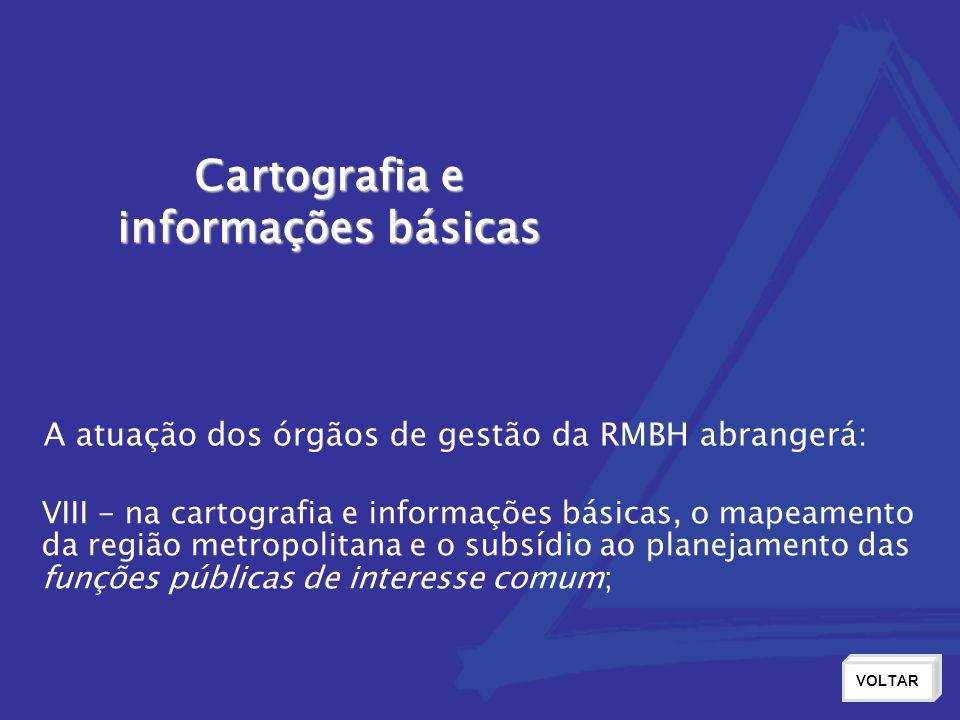 Cartografia e informações básicas VOLTAR VIII - na cartografia e informações básicas, o mapeamento da região metropolitana e o subsídio ao planejamento das funções públicas de interesse comum; A atuação dos órgãos de gestão da RMBH abrangerá: