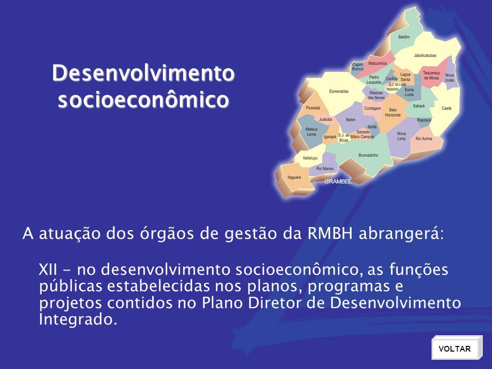 Desenvolvimentosocioeconômico VOLTAR XII - no desenvolvimento socioeconômico, as funções públicas estabelecidas nos planos, programas e projetos contidos no Plano Diretor de Desenvolvimento Integrado.