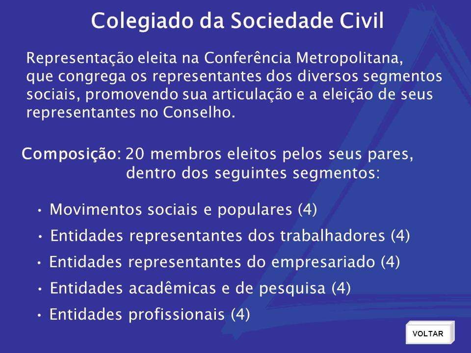 Representação eleita na Conferência Metropolitana, que congrega os representantes dos diversos segmentos sociais, promovendo sua articulação e a eleição de seus representantes no Conselho.