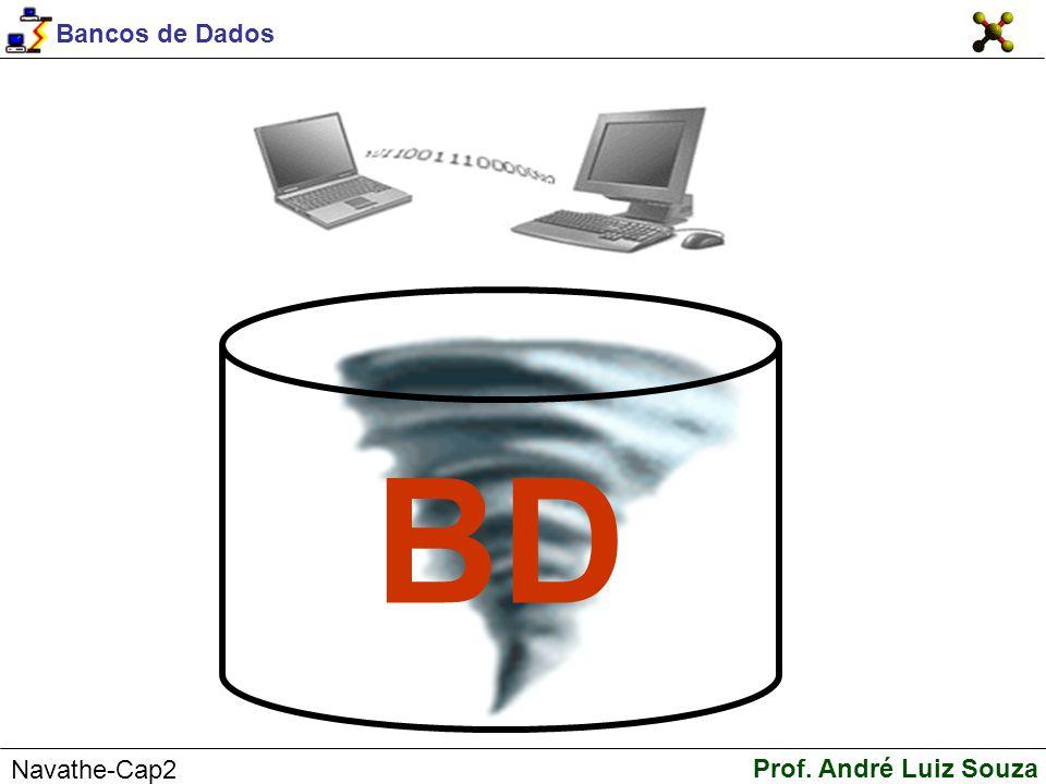 Bancos de Dados Prof. André Luiz Souza Navathe-Cap2 BD