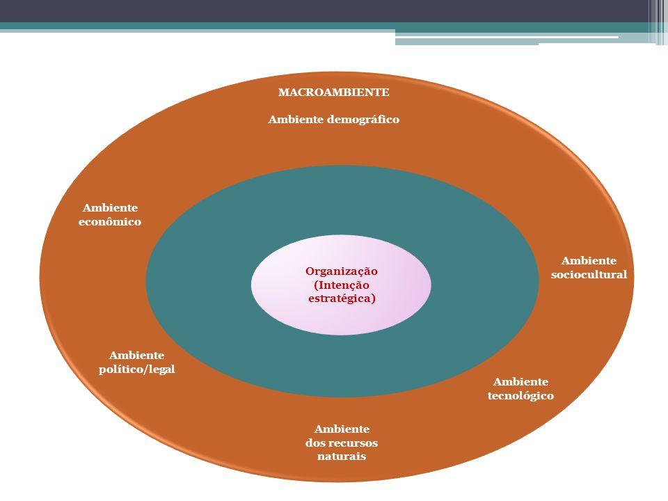 Organização (Intenção estratégica) Ambiente dos recursos naturais Ambiente econômico MACROAMBIENTE Ambiente demográfico Ambiente sociocultural Ambient