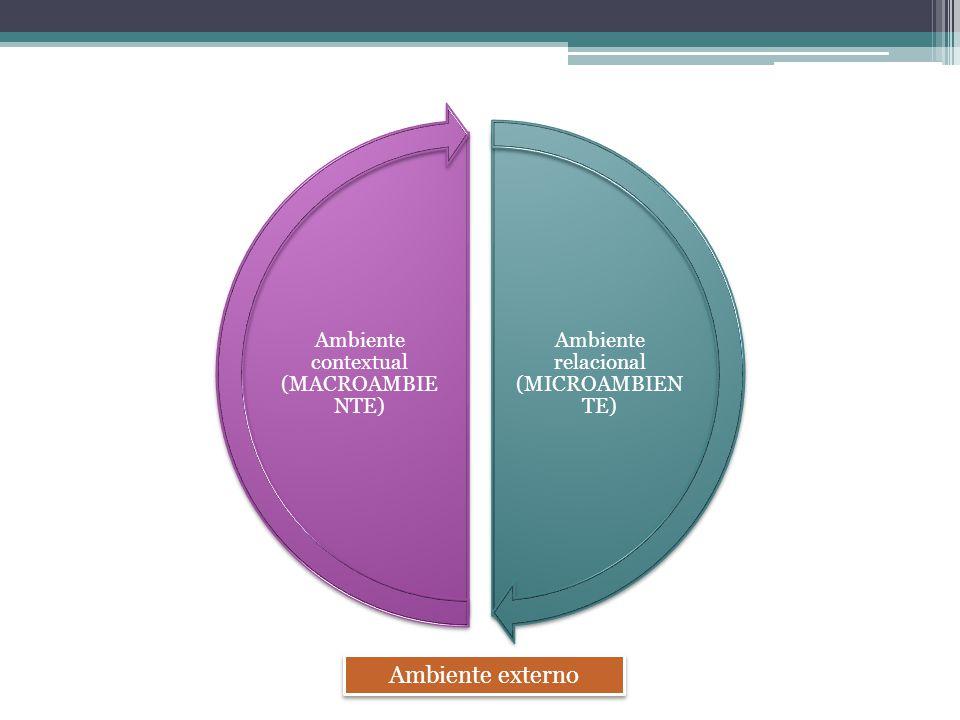 MACROAMBIENTE/CONTEXTUAL - Organização tem influência limitada - Ambiente amplo, genérico e influencia todas as organizações - Fatores ambientais limitam o que a organização pode fazer Gestores não podem influenciar MICROAMBIENTE/RELACIONAL - Ambiente mais próximo e imediato da organização - Organização é um participantes efetivo desse ambiente, influenciando resultados - Setor específico do negócio do cliente (consumidores, fornecedores, concorrentes e agências reguladoras) - Onde obtém seus recursos e coloca seus produtos e serviços - Onde elabora e aplica sua estratégia