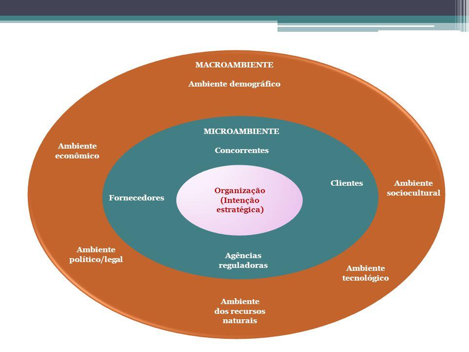 Organização (Intenção estratégica) MICROAMBIENTE Concorrentes Clientes Agências reguladoras Fornecedores Ambiente dos recursos naturais Ambiente econô