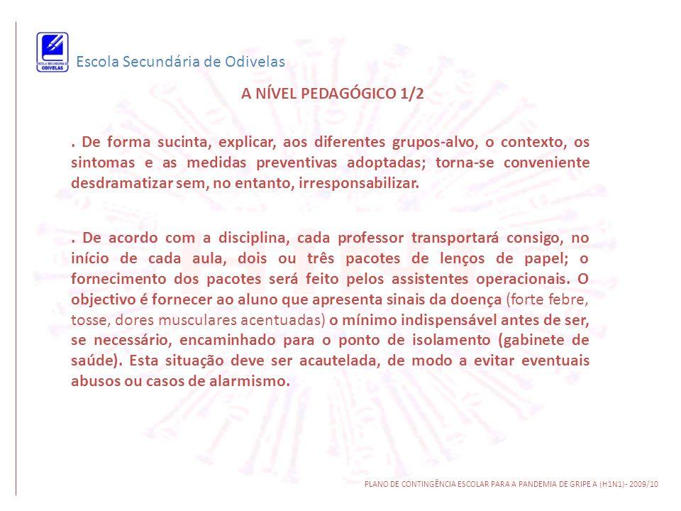 Escola Secundária de Odivelas A NÍVEL PEDAGÓGICO 1/2 PLANO DE CONTINGÊNCIA ESCOLAR PARA A PANDEMIA DE GRIPE A (H1N1)- 2009/10. De forma sucinta, expli