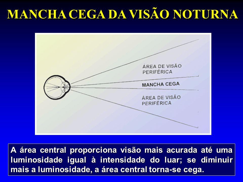 A área central proporciona visão mais acurada até uma luminosidade igual à intensidade do luar; se diminuir mais a luminosidade, a área central torna-se cega.