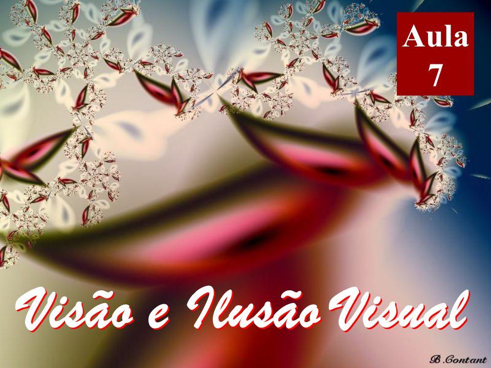Aula 7 Visão e Ilusão Visual