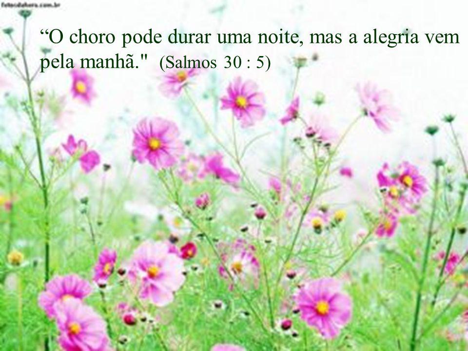 Quando só há morte, Deus é a Vida;