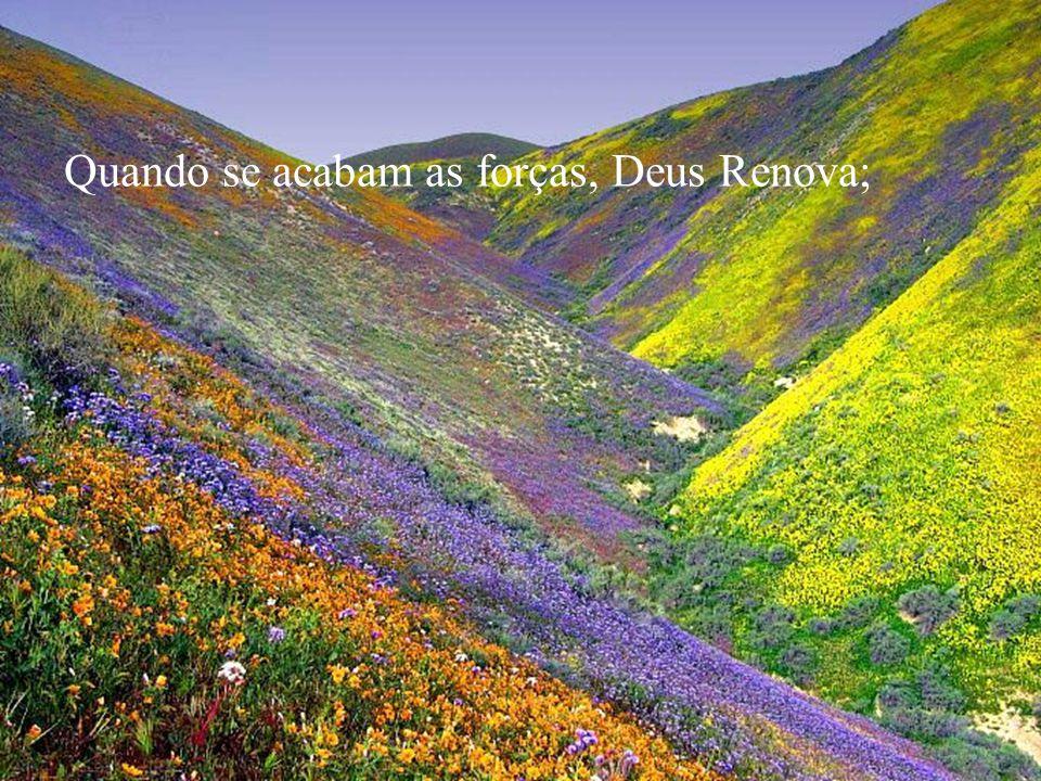 Quando o sonho se desfaz, Deus Reconstrói;