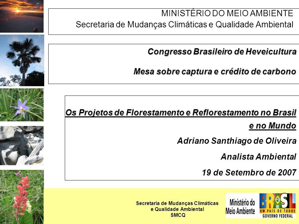 PANORAMA DOS PROJETOS DE FLORESTAMENTO/REFLORESTAMENTO (A/R) - MUNDO Metodologias Aprovadas