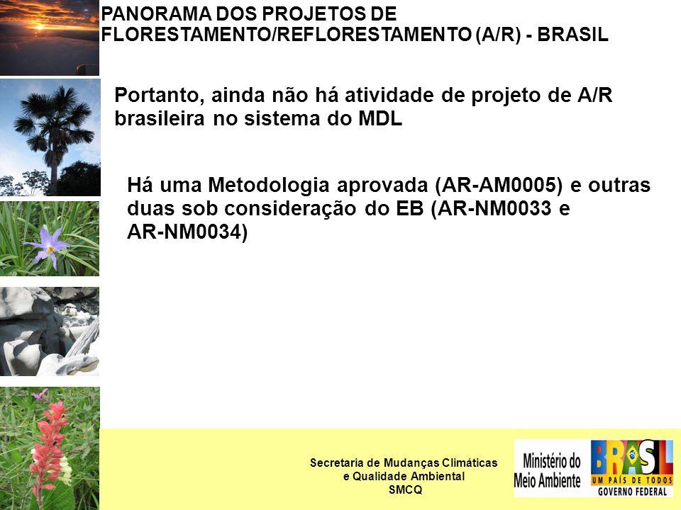 PANORAMA DOS PROJETOS DE FLORESTAMENTO/REFLORESTAMENTO (A/R) - BRASIL Portanto, ainda não há atividade de projeto de A/R brasileira no sistema do MDL Há uma Metodologia aprovada (AR-AM0005) e outras duas sob consideração do EB (AR-NM0033 e AR-NM0034) Secretaria de Mudanças Climáticas e Qualidade Ambiental SMCQ