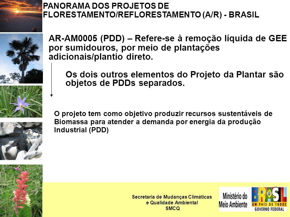 PANORAMA DOS PROJETOS DE FLORESTAMENTO/REFLORESTAMENTO (A/R) - BRASIL AR-NM0033 – PDD A Atividade de projeto consiste no reflorestamento (Tectona grandis) de áreas de campo, usadas anteriormente para atividades pecuárias.