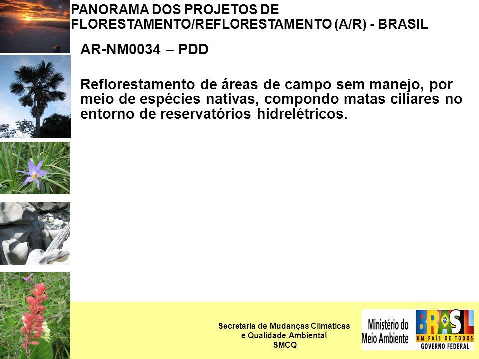 PANORAMA DOS PROJETOS DE FLORESTAMENTO/REFLORESTAMENTO (A/R) - BRASIL AR-NM0034 – PDD Reflorestamento de áreas de campo sem manejo, por meio de espécies nativas, compondo matas ciliares no entorno de reservatórios hidrelétricos.