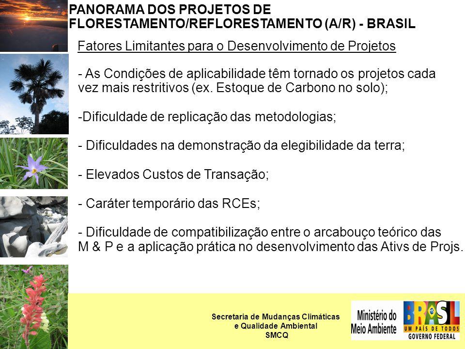 PANORAMA DOS PROJETOS DE FLORESTAMENTO/REFLORESTAMENTO (A/R) - BRASIL Fatores Limitantes para o Desenvolvimento de Projetos - As Condições de aplicabilidade têm tornado os projetos cada vez mais restritivos (ex.