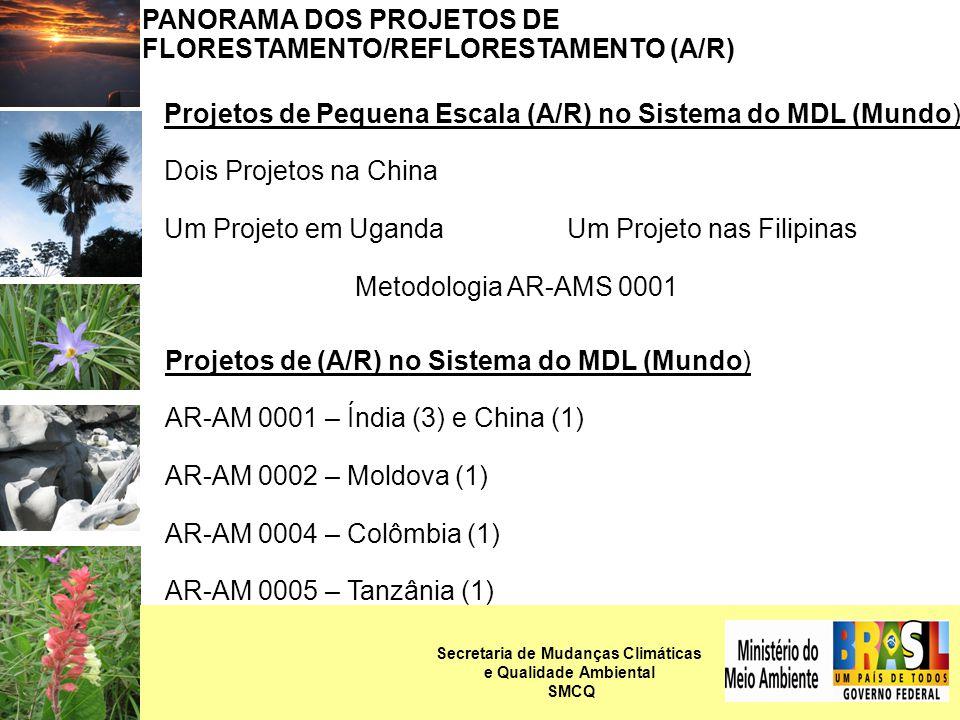 PANORAMA DOS PROJETOS DE FLORESTAMENTO/REFLORESTAMENTO (A/R) Projetos de Pequena Escala (A/R) no Sistema do MDL (Mundo) Dois Projetos na China Um Projeto em Uganda Um Projeto nas Filipinas Metodologia AR-AMS 0001 Projetos de (A/R) no Sistema do MDL (Mundo) AR-AM 0001 – Índia (3) e China (1) AR-AM 0002 – Moldova (1) AR-AM 0004 – Colômbia (1) AR-AM 0005 – Tanzânia (1) Secretaria de Mudanças Climáticas e Qualidade Ambiental SMCQ