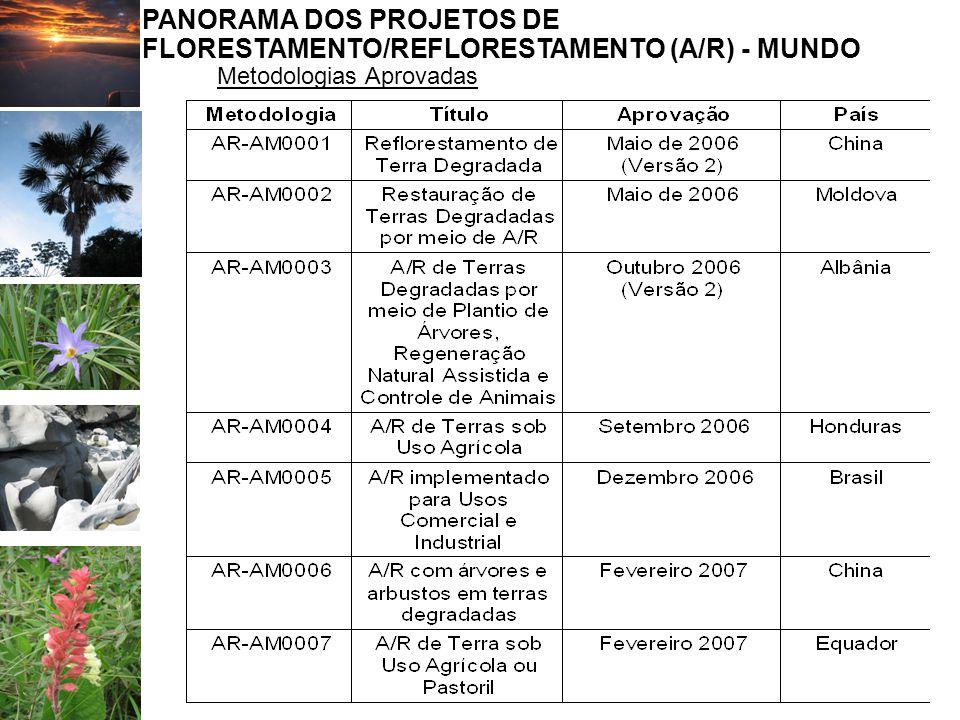 1 - Indústria de Energia (33) 4 – Indústria Manufatureira (17) 13 – Manejo de Resíduos (17) 5 – Indústrias Químicas (11) 14 – Florestamento/Reflorestamento (09) 18 de setembro de 2007 18 de junho de 2006 1 - Indústria de Energia (17) 13 – Manejo de Resíduos (17) 4 – Indústria Manufatureira (07) 3 – E pelo lado da Demanda (06) 15 – Agricultura (05) 10 – ↑ Fugitivas de comb (04) 14 – Florestamento/Reflorestamento (04)