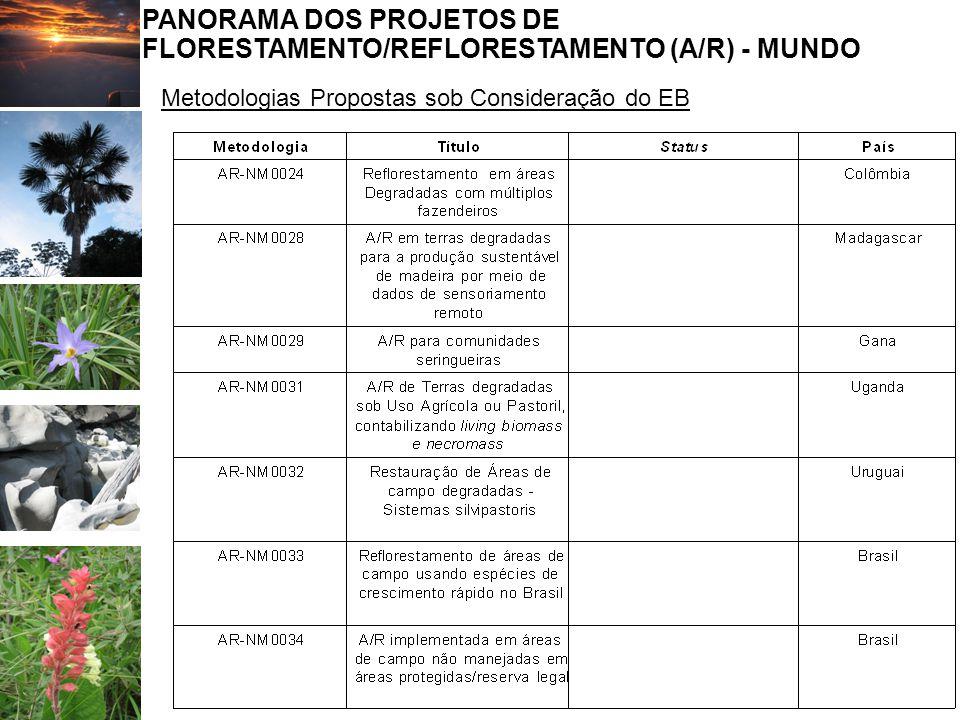 PANORAMA DOS PROJETOS DE FLORESTAMENTO/REFLORESTAMENTO (A/R) - MUNDO Metodologias Propostas sob Consideração do EB