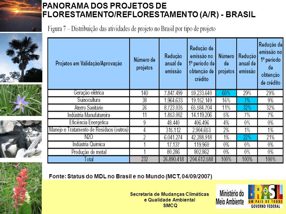 PANORAMA DOS PROJETOS DE FLORESTAMENTO/REFLORESTAMENTO (A/R) - BRASIL Fonte: Status do MDL no Brasil e no Mundo (MCT, 04/09/2007) Secretaria de Mudanças Climáticas e Qualidade Ambiental SMCQ