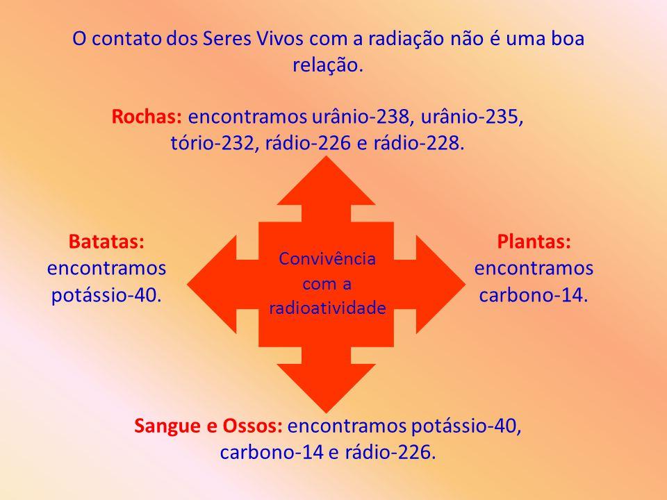 O contato dos Seres Vivos com a radiação não é uma boa relação. Convivência com a radioatividade Rochas: encontramos urânio-238, urânio-235, tório-232