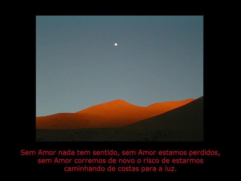 Sem Amor nada tem sentido, sem Amor estamos perdidos, sem Amor corremos de novo o risco de estarmos caminhando de costas para a luz.