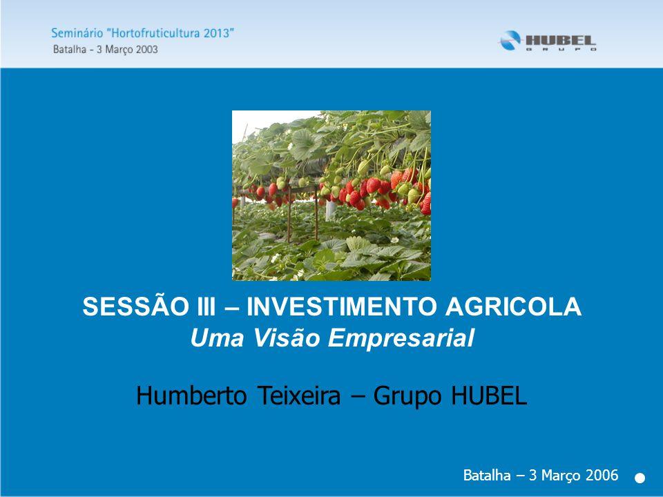 SESSÃO III – INVESTIMENTO AGRICOLA Uma Visão Empresarial Batalha – 3 Março 2006 Humberto Teixeira – Grupo HUBEL