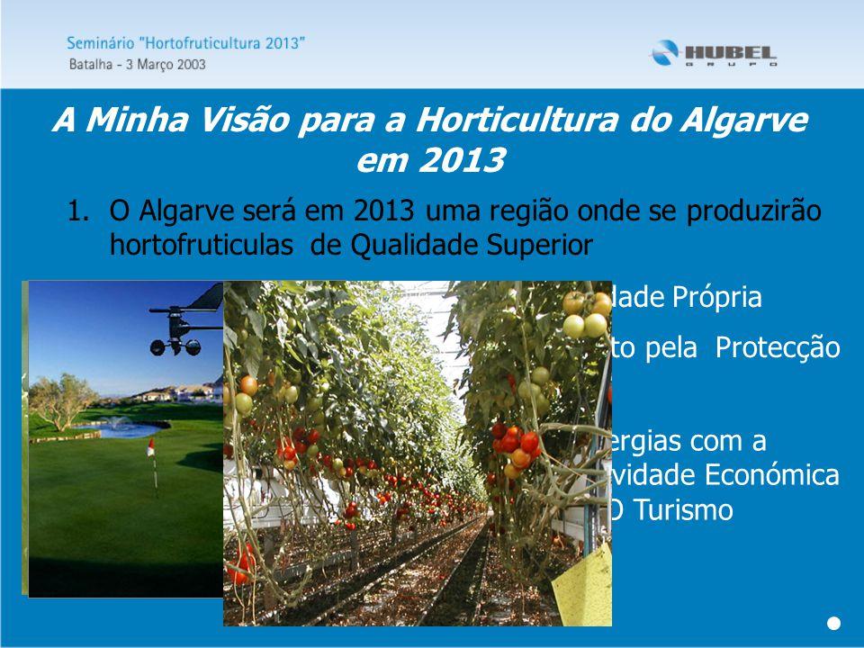 1.O Algarve será em 2013 uma região onde se produzirão hortofruticulas de Qualidade Superior Com Identidade Própria Com Respeito pela Protecção do Ambiente Criando sinergias com a Principal Actividade Económica da Região - O Turismo A Minha Visão para a Horticultura do Algarve em 2013