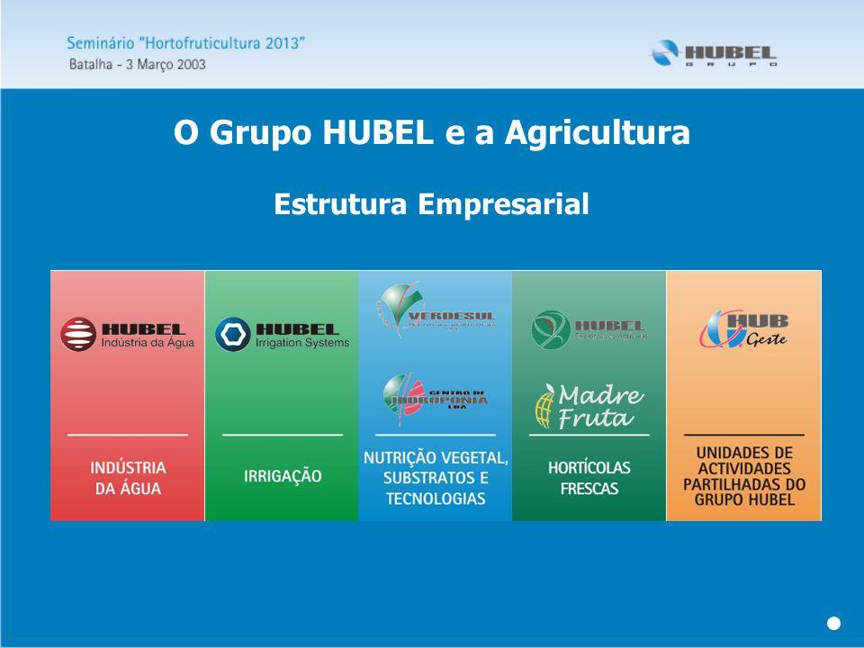 Estrutura Empresarial O Grupo HUBEL e a Agricultura